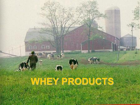 WHEY PRODUCTS. By-product of cheese?? 100L Milk,12 kg Cheese,3kg casein, 87L whey.