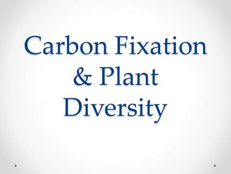 Carbon Fixation & Plant Diversity. Carbon Fixation Reactions Forming organic molecules from CO 2.
