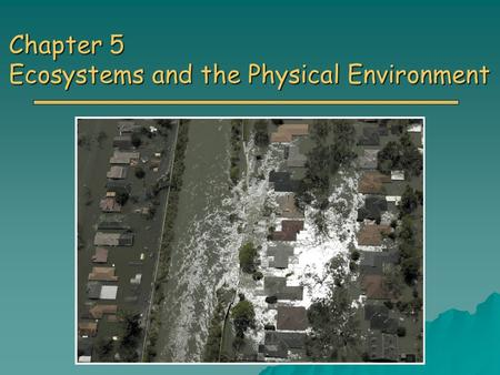 Chapter 5 Ecosystems and the Physical Environment.