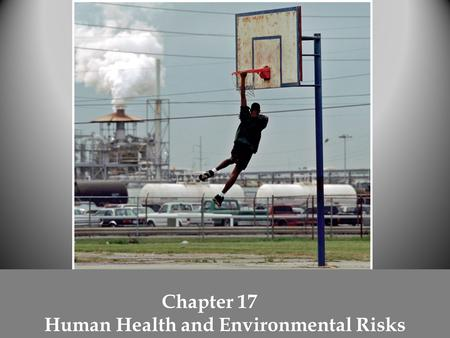 Chapter 17 Human Health and Environmental Risks. Three categories of human health risks Physical – environmental factors (natural disasters) that cause.