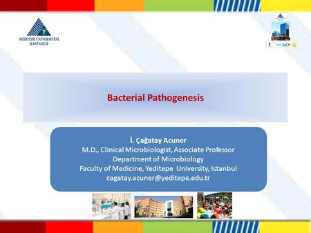 Bacterial Pathogenesis İ. Çağatay Acuner M.D., Clinical Microbiologist, Associate Professor Department of Microbiology Faculty of Medicine, Yeditepe University,
