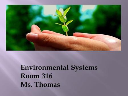 Environmental Systems Room 316 Ms. Thomas  Have you ever been asked to collaborate with other people and to follow certain rules to achieve a common.