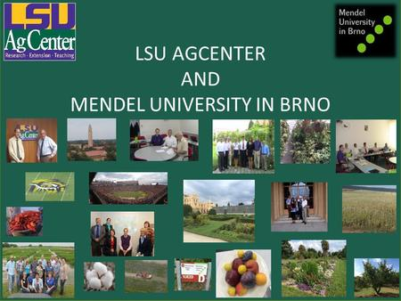 LSU AGCENTER AND MENDEL UNIVERSITY IN BRNO Louisiana State University AgCenter & Mendel University in Brno Michaela Vesela 20 April, 2016.