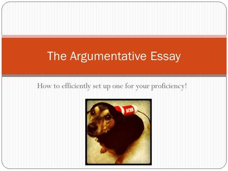 How to efficiently set up one for your proficiency! The Argumentative Essay.