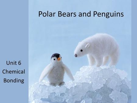 Unit 6 Chemical Bonding Polar Bears and Penguins.