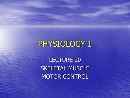 PHYSIOLOGY 1 LECTURE 20 SKELETAL MUSCLE MOTOR CONTROL.