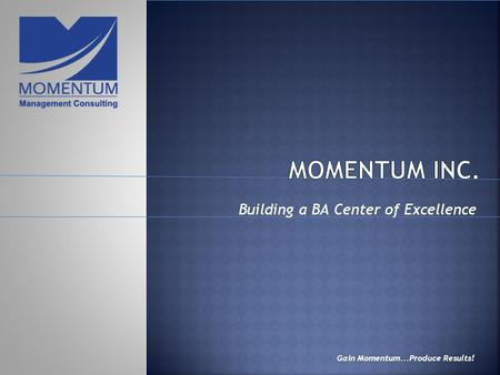 Building a BA Center of Excellence Gain Momentum...Produce Results!