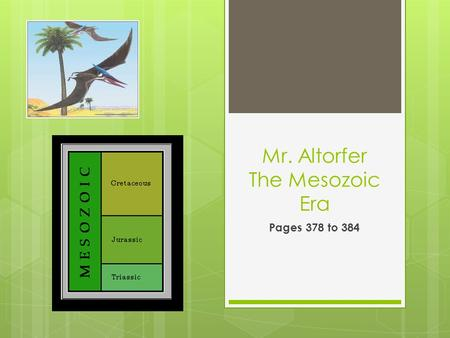 Mr. Altorfer The Mesozoic Era Pages 378 to 384.  Geology of the Mesozoic Era  The Mesozoic era is divided into the Triassic Period, the Jurassic period,