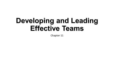 Developing and Leading Effective Teams