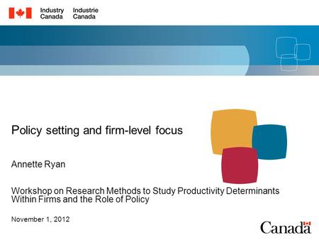 Workshop on Research Methods to Study Productivity Determinants Within Firms and the Role of Policy November 1, 2012 P olicy setting and firm-level focus.