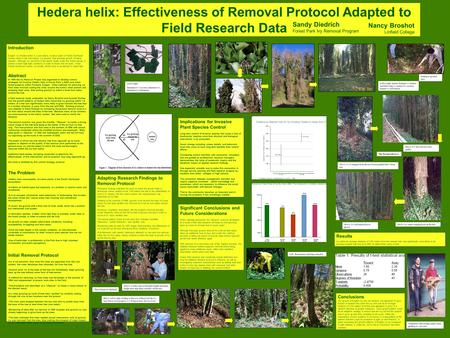 Hedera helix: Effectiveness of Removal Protocol Adapted to Field Research Data Sandy Diedrich Forest Park Ivy Removal Program Nancy Broshot Linfield College.