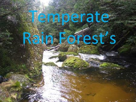 Click to edit Master subtitle style Temperate Rain Forest's.