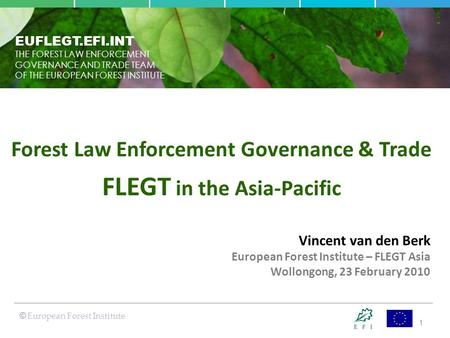1 EUFLEGT.EFI.INT THE FOREST LAW ENFORCEMENT GOVERNANCE AND TRADE TEAM OF THE EUROPEAN FOREST INSTITUTE © European Forest Institute Vincent van den Berk.