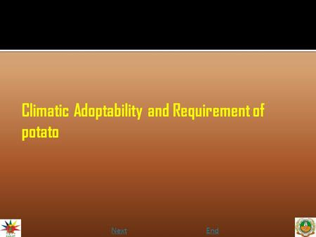 Climatic Adoptability and Requirement of potato NextEnd.