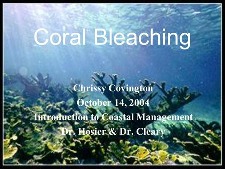 Coral Bleaching Chrissy Covington October 14, 2004 Introduction to Coastal Management Dr. Hosier & Dr. Cleary.