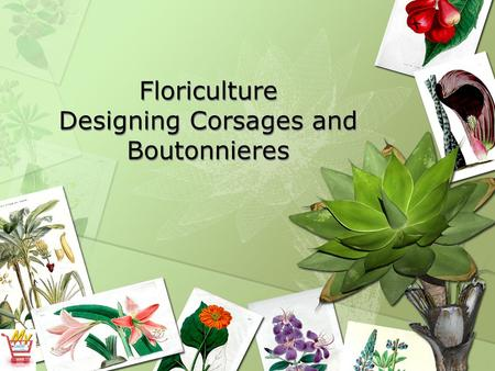 Floriculture Designing Corsages and Boutonnieres.