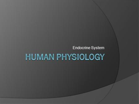Endocrine System. Endocrine System: Overview Works with nervous system to coordinate activities Major influence on metabolism Endocrine glands: pituitary,