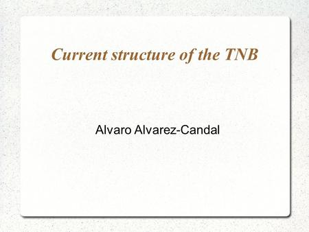Current structure of the TNB Alvaro Alvarez-Candal.