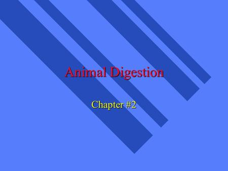 Animal Digestion Chapter #2. What are Nutrients? n parts of food which provide for growth, maintenance, body functions n Carbohydrates (CHO) n Fats n.