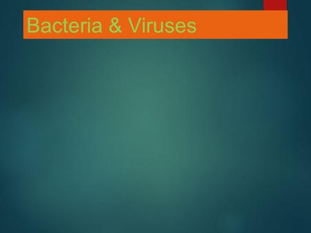 Bacteria & Viruses. DO NOW: WHAT ARE THE CHARACTERISTICS OF VIRUSES? BACTERIA? WHAT KINGDOM DO EACH OF THESE BELONG? ARE THEY LIVING? WHY OR WHY NOT ?