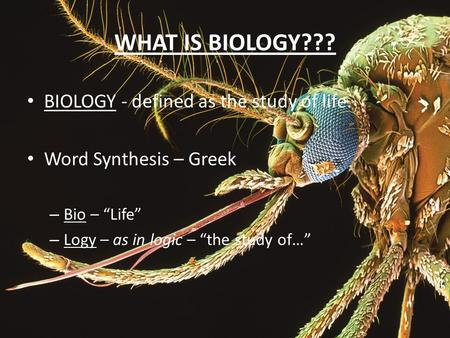 "WHAT IS BIOLOGY??? BIOLOGY - defined as the study of life. Word Synthesis – Greek – Bio – ""Life"" – Logy – as in logic – ""the study of…"""