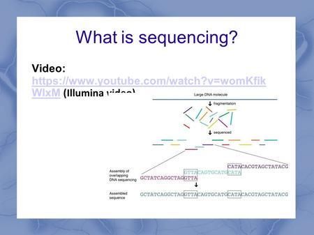 What is sequencing? Video: https://www.youtube.com/watch?v=womKfik WlxM (Illumina video) https://www.youtube.com/watch?v=womKfik WlxM.