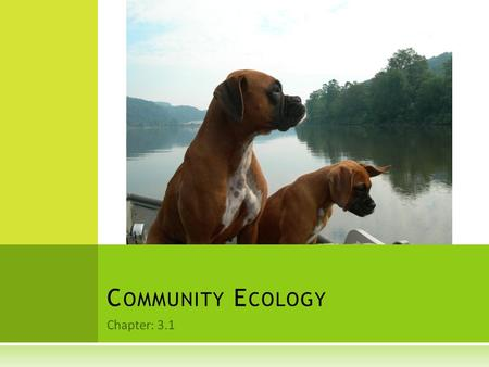 Chapter: 3.1 C OMMUNITY E COLOGY.  All living organisms are limited by factors in the environment  A biological community is a group of interacting.