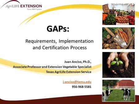 GAPs: Purpose, Requirements, Implementation and Certification Process Juan Anciso, Ph.D., Associate Professor and Extension Vegetable Specialist Texas.