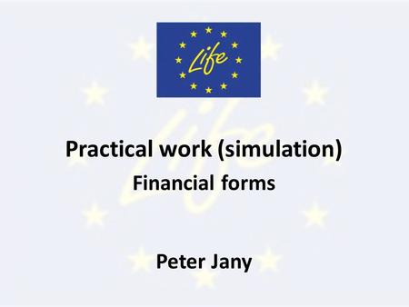 Practical work (simulation) Financial forms Peter Jany.