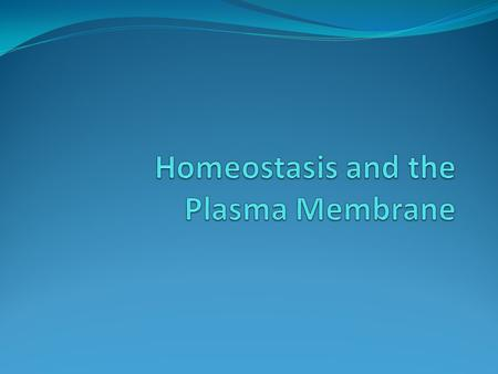 Membrane structure Plasma membrane: helps cells regulate and adjust to continuously changing environment The cell needs to keep its internal concentration.