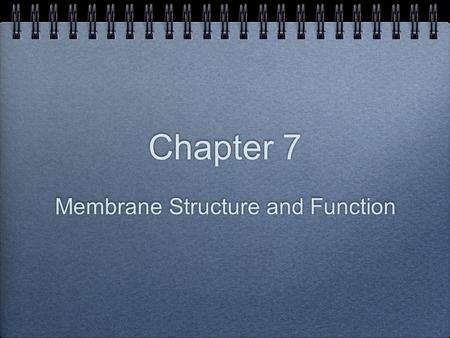 Membrane Structure and Function Chapter 7.  The plasma membrane  Is the boundary that separates the living cell from its nonliving surroundings.