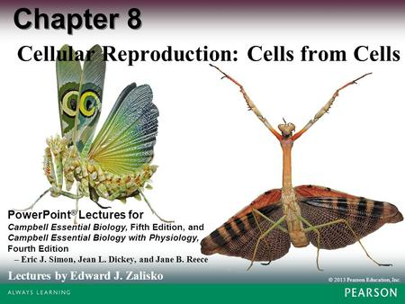 © 2013 Pearson Education, Inc. Lectures by Edward J. Zalisko PowerPoint ® Lectures for Campbell Essential Biology, Fifth Edition, and Campbell Essential.