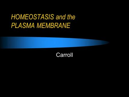 HOMEOSTASIS and the PLASMA MEMBRANE Carroll. Objectives Explain the function of the plasma membrane. Relate the function of the plasma membrane to the.