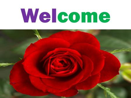 Welcome. Introduction Name: Mohammad Mahibur Rahaman Post: Assistant teacher School name: Murapara model pilot high school U.P: Rupgonj Dist:Narayang.