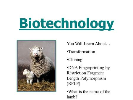 Biotechnology You Will Learn About… Transformation Cloning DNA Fingerprinting by Restriction Fragment Length Polymorphism (RFLP) What is the name of the.