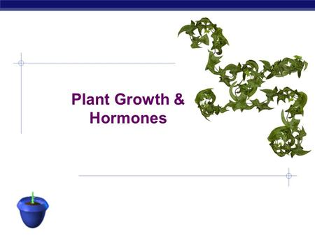 AP Biology Plant Growth & Hormones AP Biology Growth in Plants  Specific regions of growth: meristems  stem cells: perpetually embryonic tissue  regenerate.