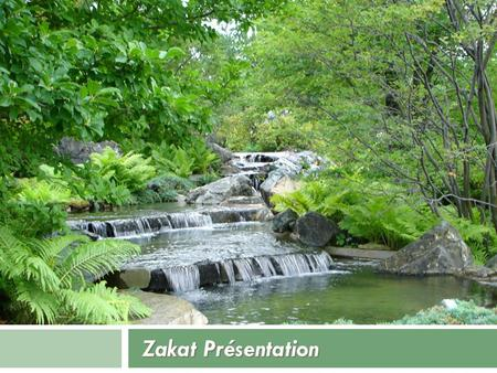 Zakat Présentation. Table of Cotents  Quick overview of Zakat al-Fitr  Zakat al-Maal  This course will not include Zakah on livestock or agriculture.