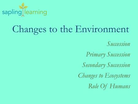 Changes to the Environment Succession Primary Succession Secondary Succession Changes to Ecosystems Role Of Humans.