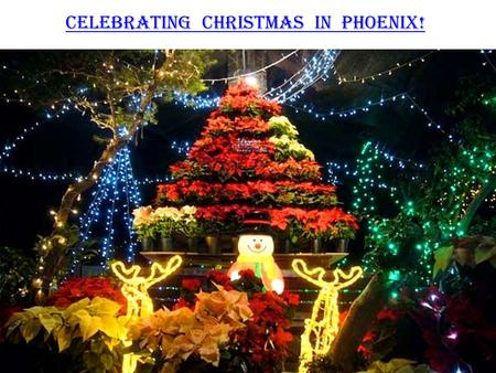 Celebrating Christmas in Phoenix!. It's that time of the year again, Where the air carries the aroma of baking treats, People carry that cheer of the.