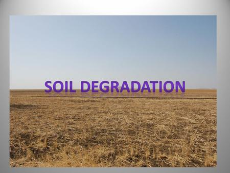 SOIL DEGRADATION  When plants (trees & shrubs) are cleared from a site, soil is exposed to sunlight and the eroding effects of wind and water. Soil aeration.