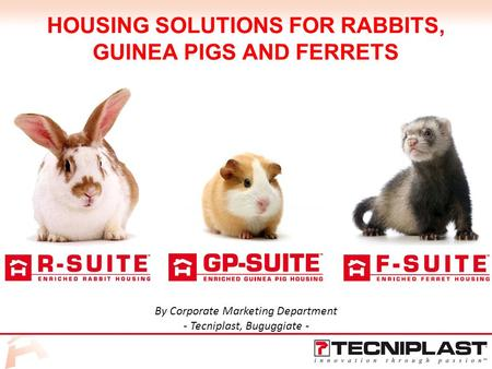 HOUSING SOLUTIONS FOR RABBITS, GUINEA PIGS AND FERRETS By Corporate Marketing Department - Tecniplast, Buguggiate -