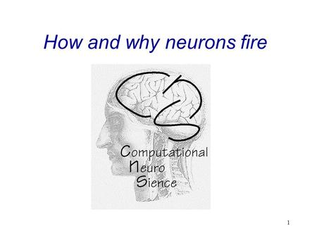 "1 How and why neurons fire. 2 ""The Neuron "" Contents:  Structure  Electrical Membrane Properties  Ion Channels  Actionpotential  Signal Propagation."