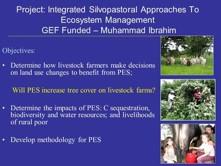 Objectives: Determine how livestock farmers make decisions on land use changes to benefit from PES; Will PES increase tree cover on livestock farms? Determine.