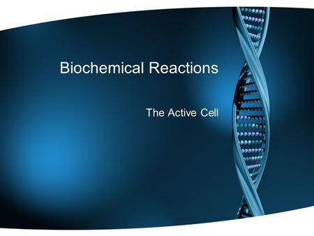 Biochemical Reactions The Active Cell. Biological Reactions Metabolism is a term used to refer to all the chemical reactions that take place in a living.
