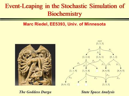 Event-Leaping in the Stochastic Simulation of Biochemistry State Space AnalysisThe Goddess Durga Marc Riedel, EE5393, Univ. of Minnesota.