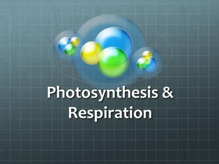 Photosynthesis & Respiration. PHOTOSYNTHESIS PLANTS NEED: WATER WATER.