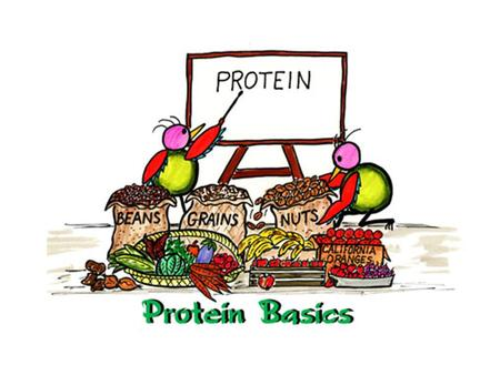 Proteins  Are the most diverse biomolecules. They make up muscles, skin, hair, enzymes, hormones, hemoglobin, and antibodies.  The basic structure unit.