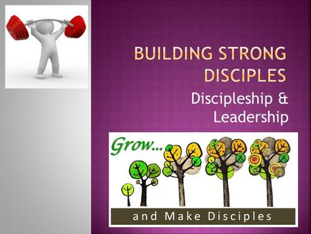 "Discipleship & Leadership. Get ""The Purple Book"" and go through it with someone."