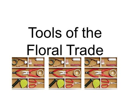 Tools of the Floral Trade. Mechanics Attaching Mechanics Glue sticks Glue gun Aerosol floral adhesive Liquid floral adhesive Hot glue pan Floral clay.