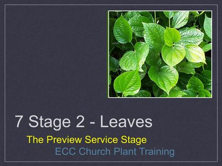 7 Stage 2 - Leaves The Preview Service Stage ECC Church Plant Training.